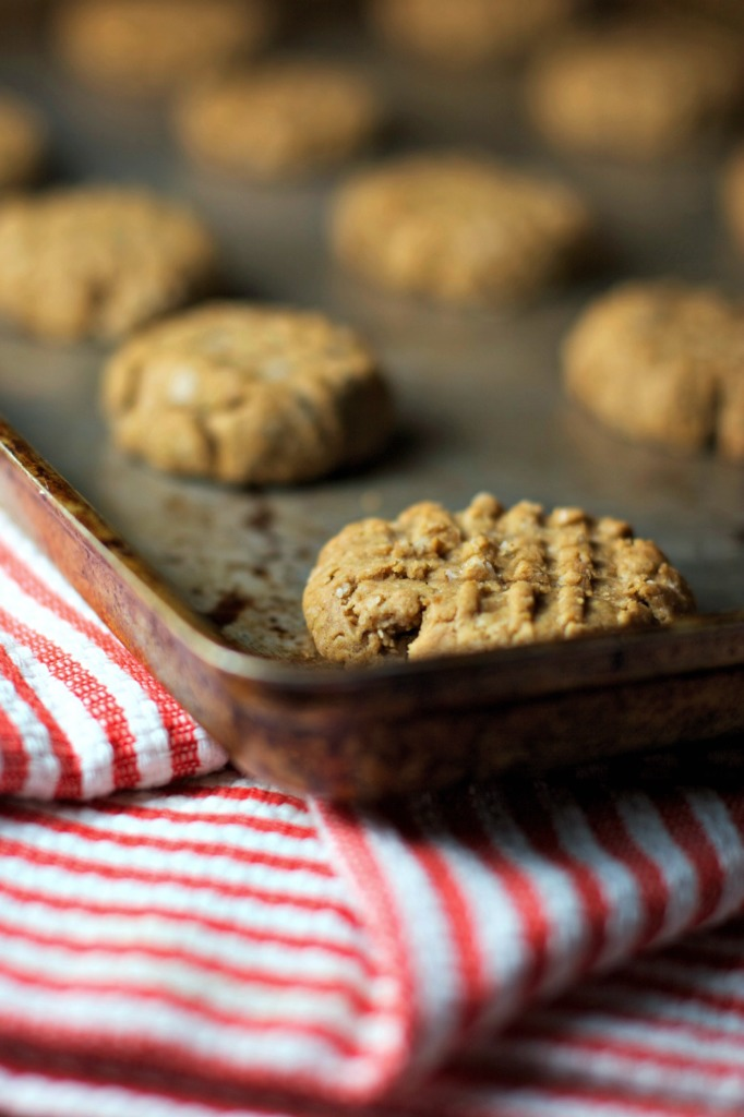 Peanut Butter Oat Cookies ~vegan and gluten free~ Simple to make and healthy!